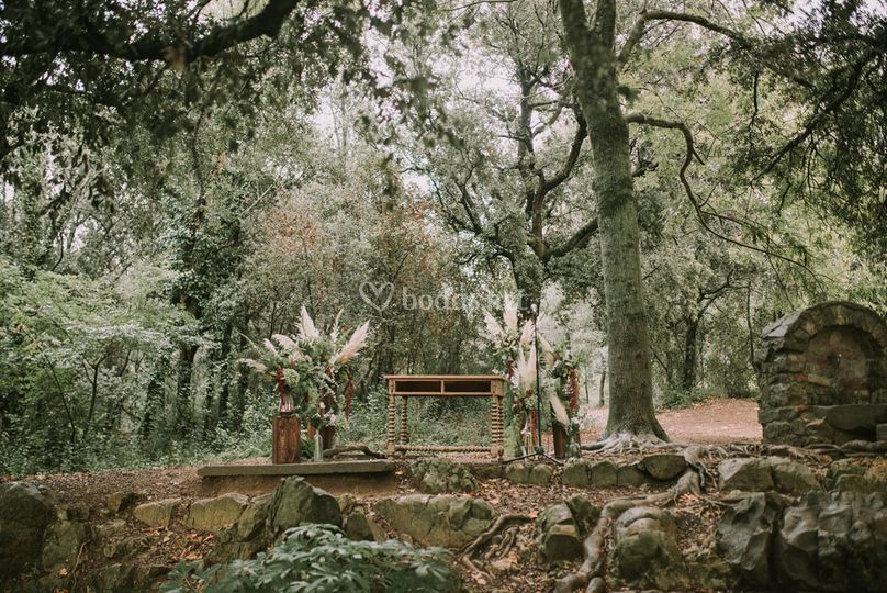 Ceremonia en la encina