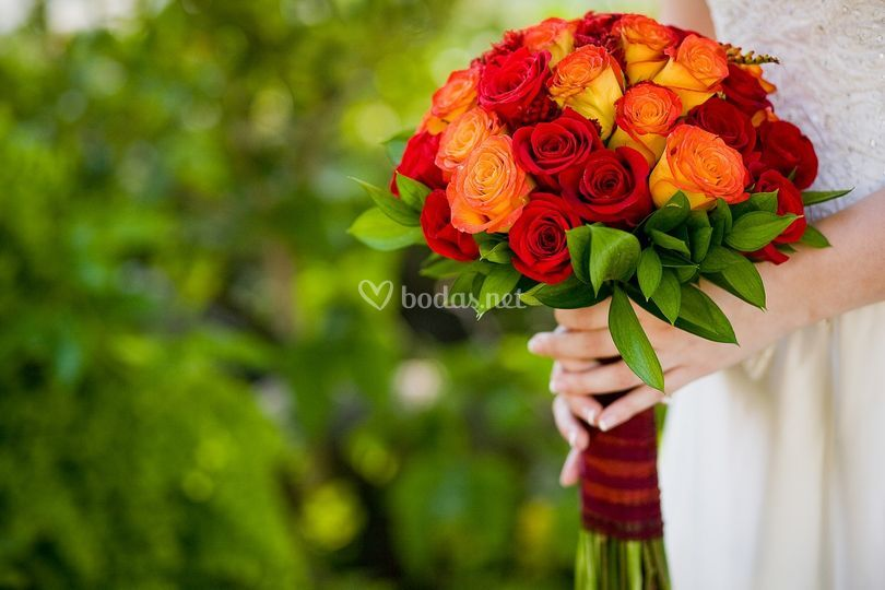 Rosas, siempre perfectas