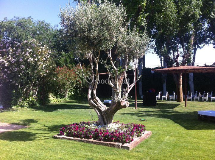Jardín Ribera 1