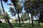 Bosque: zona aperitivo bodas de Ayre Hotel C�rdoba