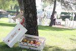 Detalles boda jardin de Ayre Hotel C�rdoba
