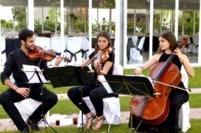 String Music Eventos
