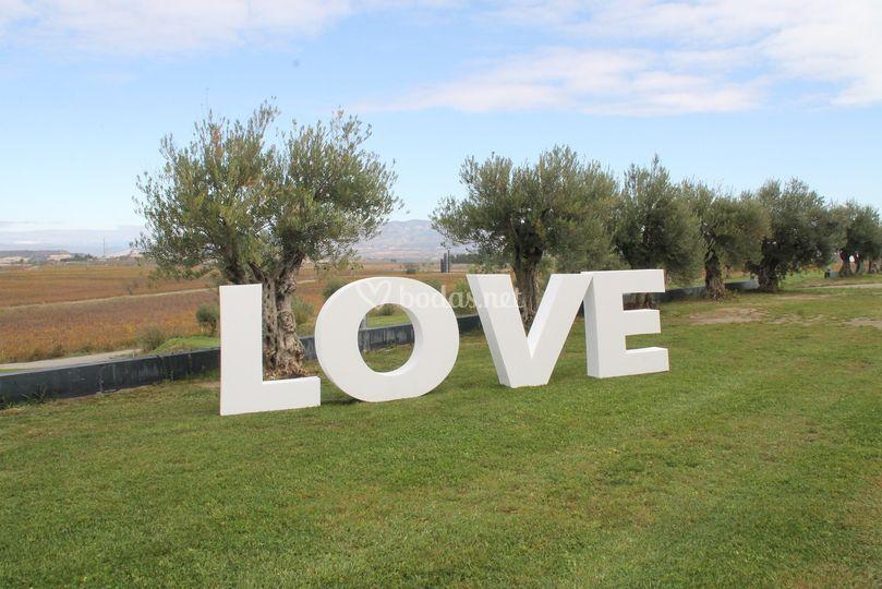 Love gigante bodas