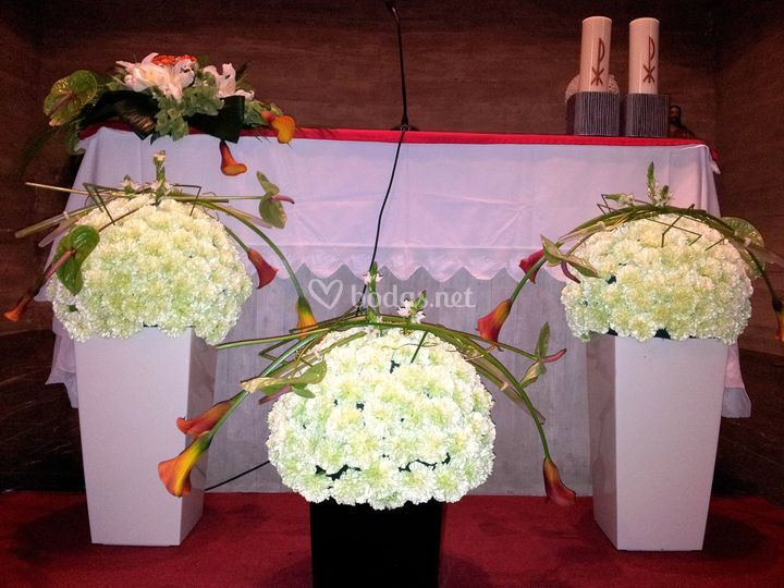 Variedad de flores