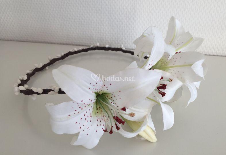 Corona  Lilies