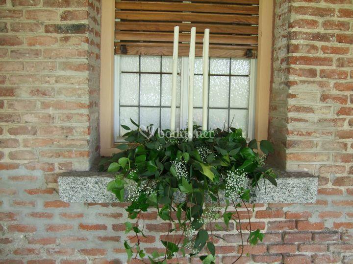 Floristería Jicara