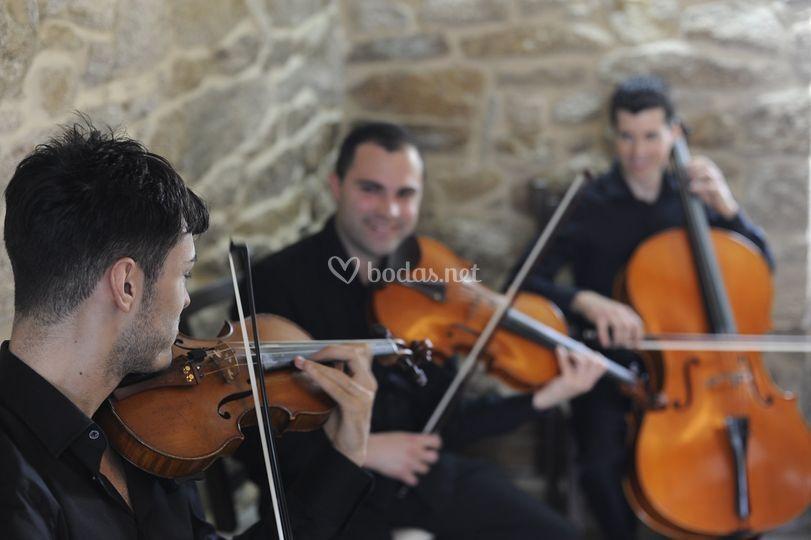 Trio grupo cuerda Musieventos
