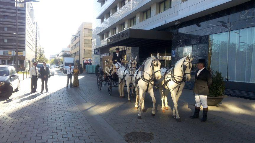 Cuatro caballos a la inglesa