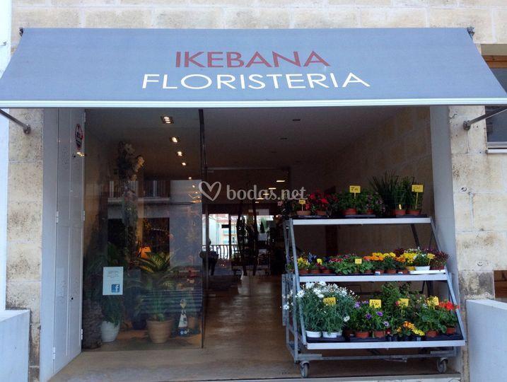 Entrada a la tienda en Menorca