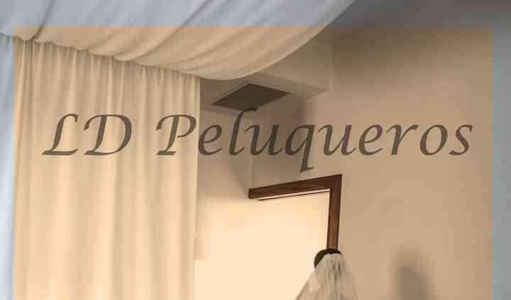 LD Peluqueros