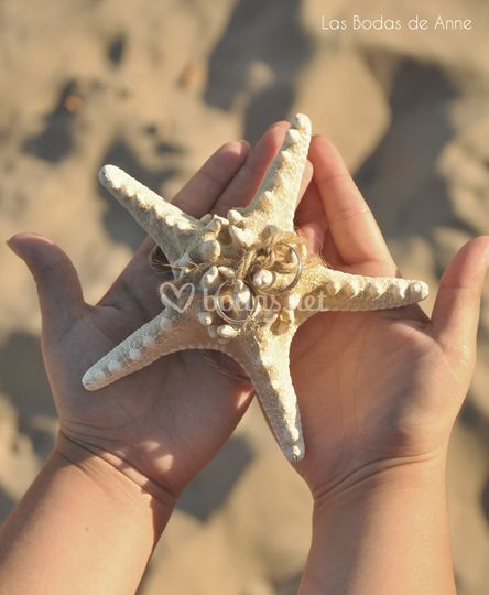 Porta alianzas estrella de mar