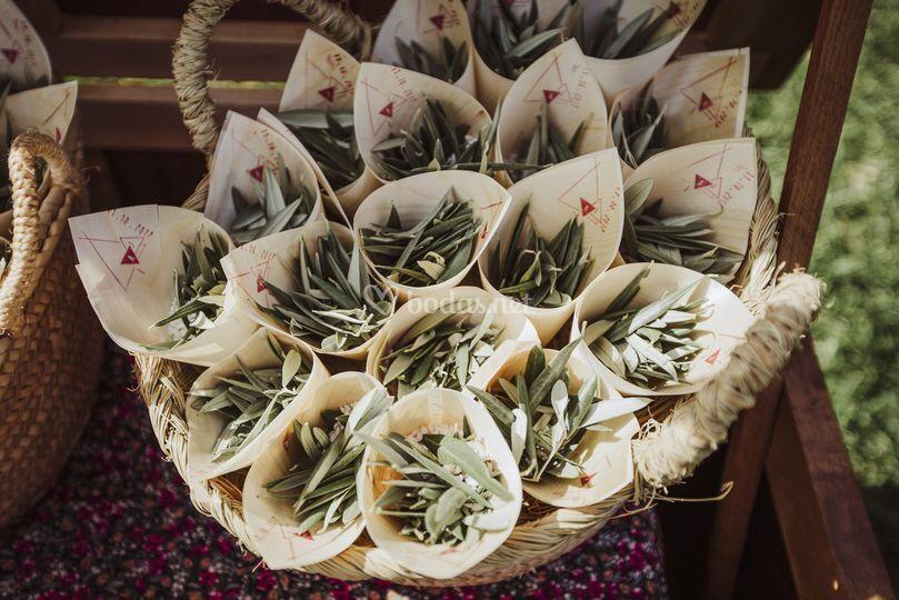 Conos de olivo para ceremonia