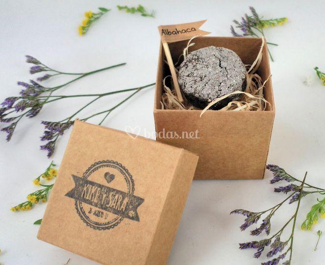 Caja con 1 bomba de semillas