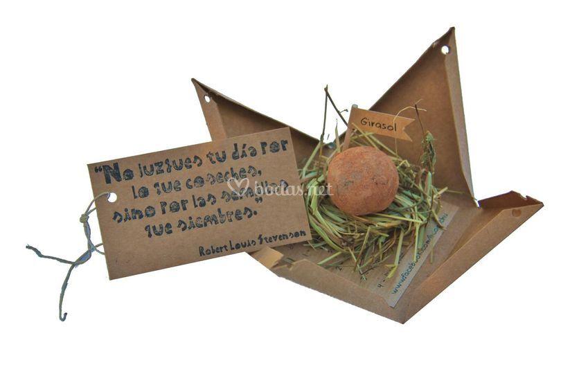 Pirámide con bomba de semillas