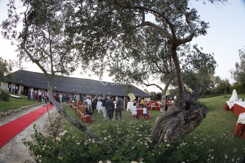 Salón de Celebraciones San Bartolomé