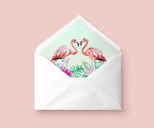 Sobre Flamingos