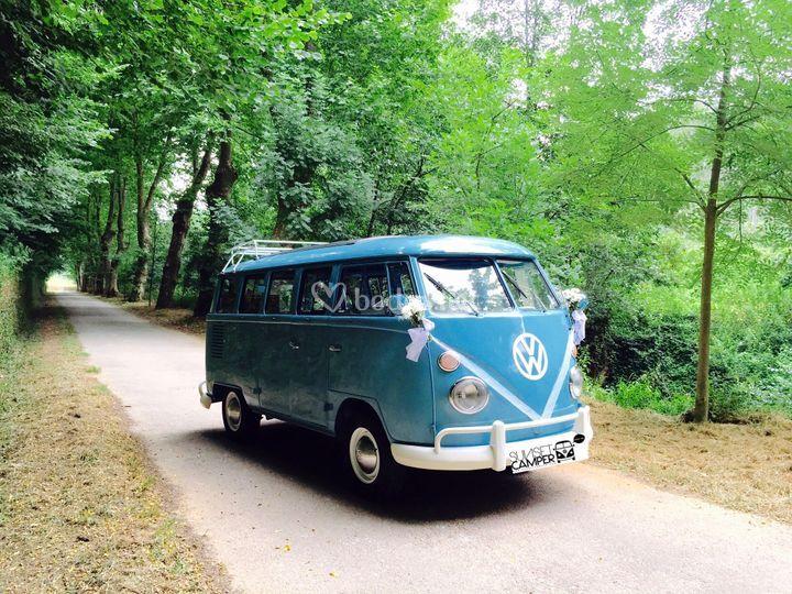 VW Kombi T1