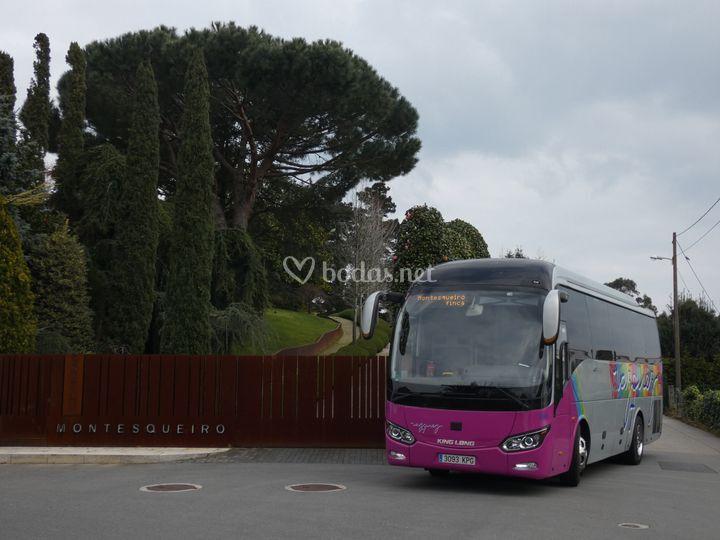 Minibuses de 30-35 plazas