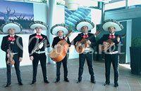 Grupos Mariachis, Tunas, Coro Rocieros...