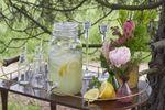 Rincon de limonada