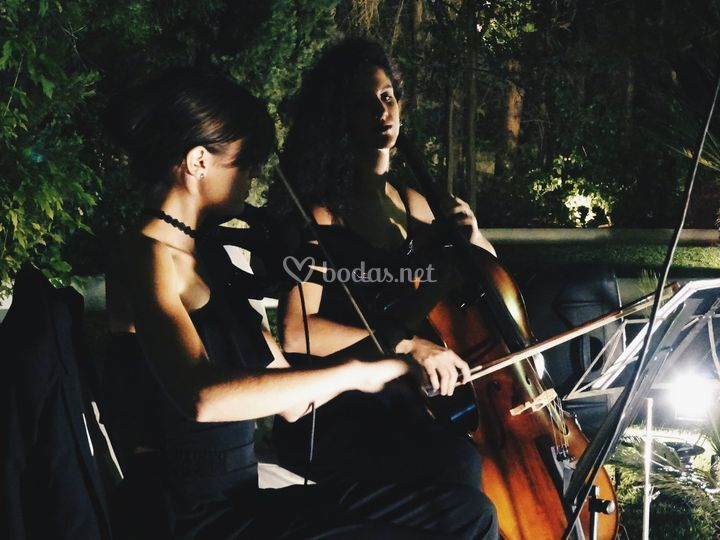 Dúo violín & violonchelo