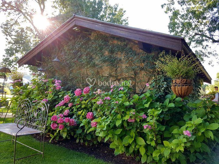 El ropero y sus hortensias