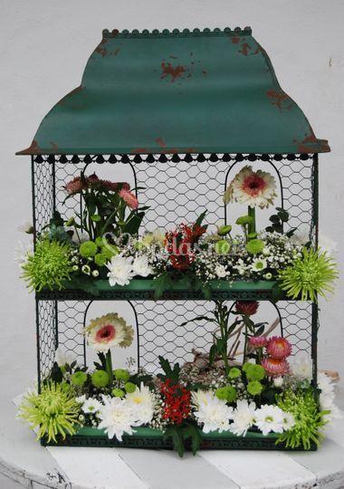 Mini jardín en jaula