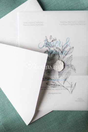 Colección caligrafía Serenity