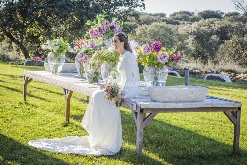 Wedding Planner con Alma
