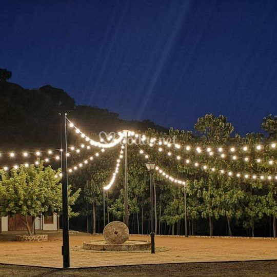 Plaza iluminada