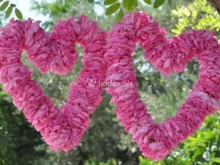 Rosas de Bulgaria