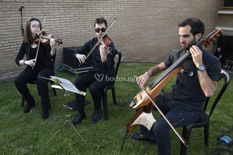 Música en evento en Lleida