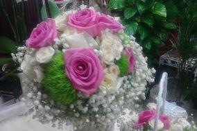 Florería Malopa
