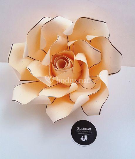 Rosa de papel en varios tamaño