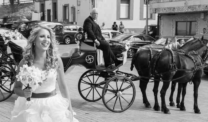 Detalles coche de caballos