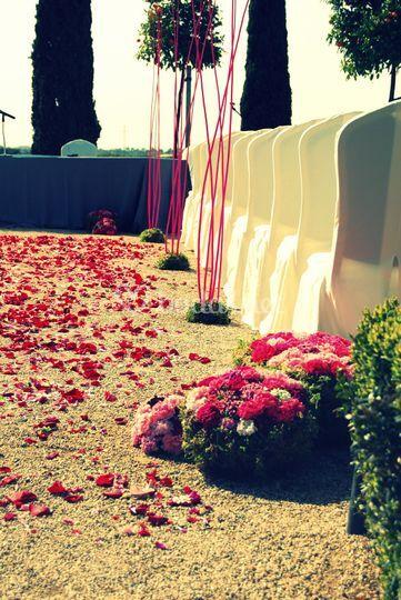 Tonos rosas