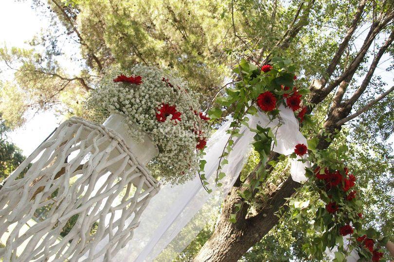 Paniculata y gerberas rojas