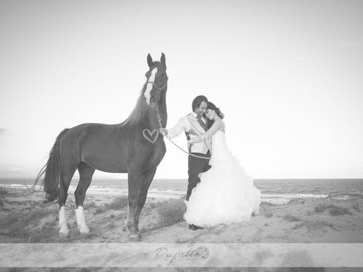 Sesión con caballo