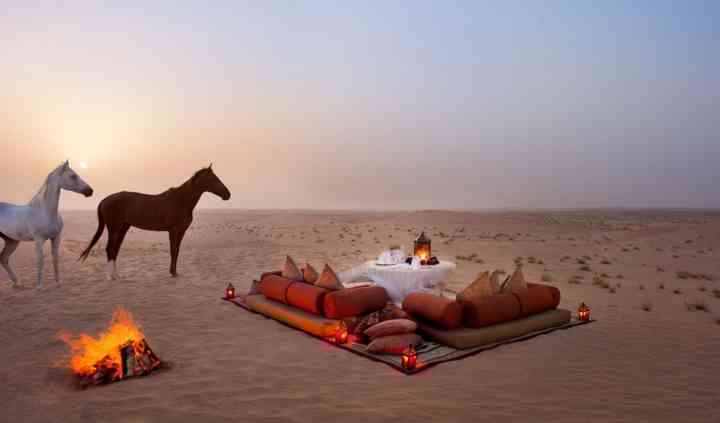 Excursiones al desierto