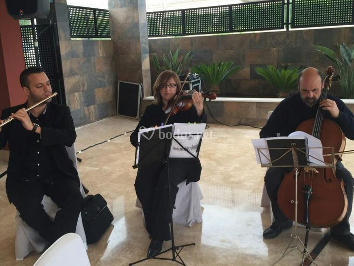 Salones Montepinar Musica