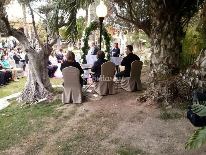 Música boda puente tocinos