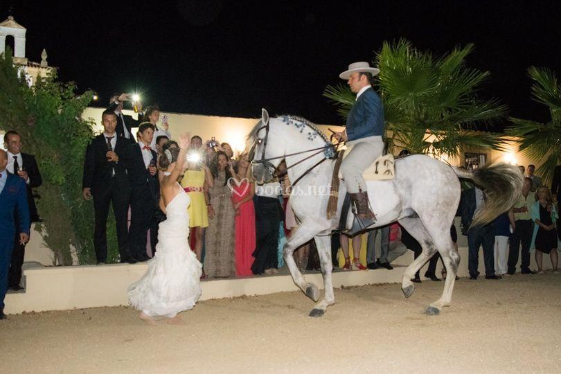 Animación con caballos en Casa Palacio El Trasquilon