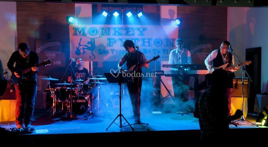 Monkey Python Show