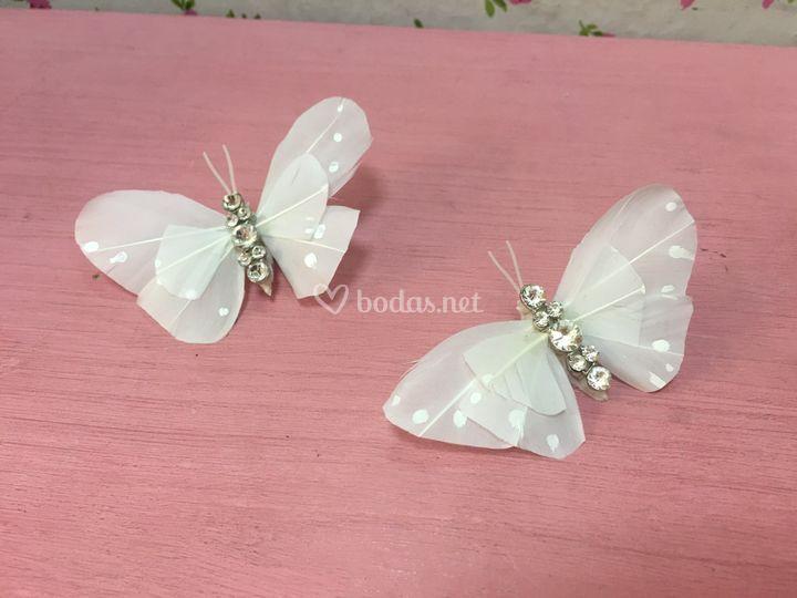 Mariposas para tu día