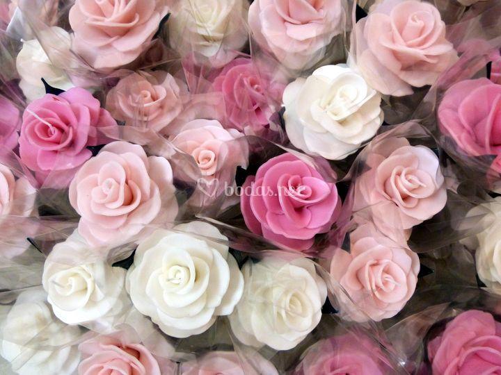 Rosas colores