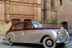 Musycars Eventos Especiales
