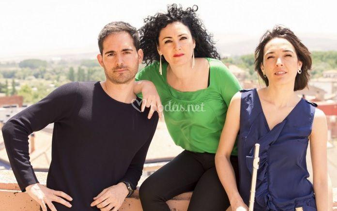 Sylius Trio
