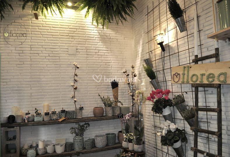 Interior Florea