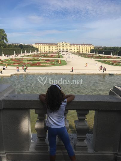 Safe Tour- Palacio del Schonbrumg - Viena