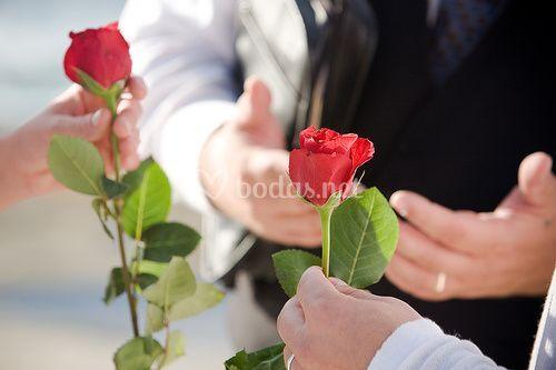 Ritual de la rosa